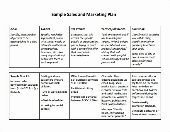 Sales and Marketing Plan Template Luxury Free Sales Plan Templates Free Printables Word Excel