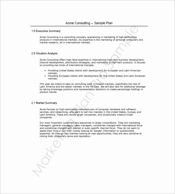 Sales and Marketing Plan Template New Sales and Marketing Plan Templates 19 Word Excel Pdf