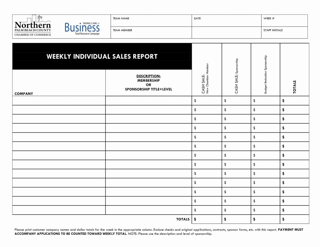 Sales Call Report Template Excel Awesome Daily Sales Call Report Template