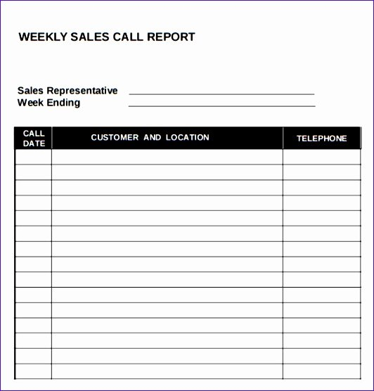Sales Call Report Template Luxury 10 Call Report Template Excel Exceltemplates