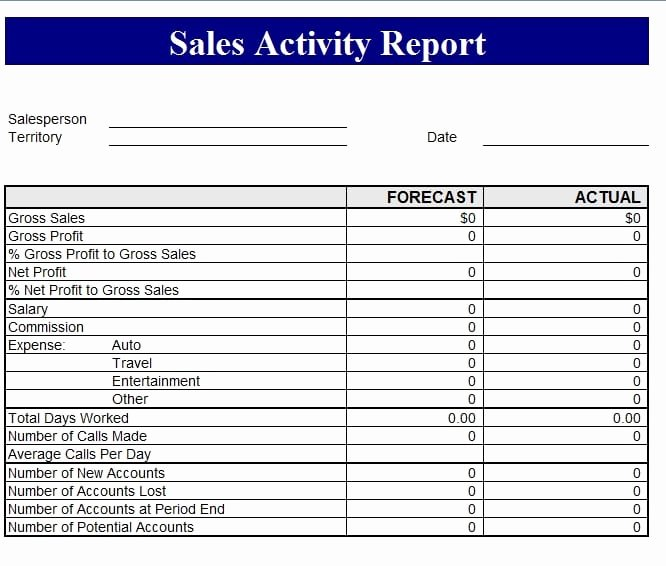 Sales Call Reporting Template Lovely Sales Revenue Report Template Free formats Excel Word