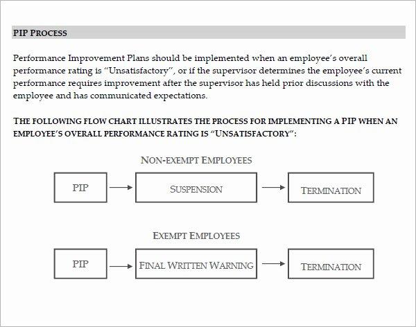 Sales Performance Improvement Plan Template New Performance Improvement Plan Template 14 Download