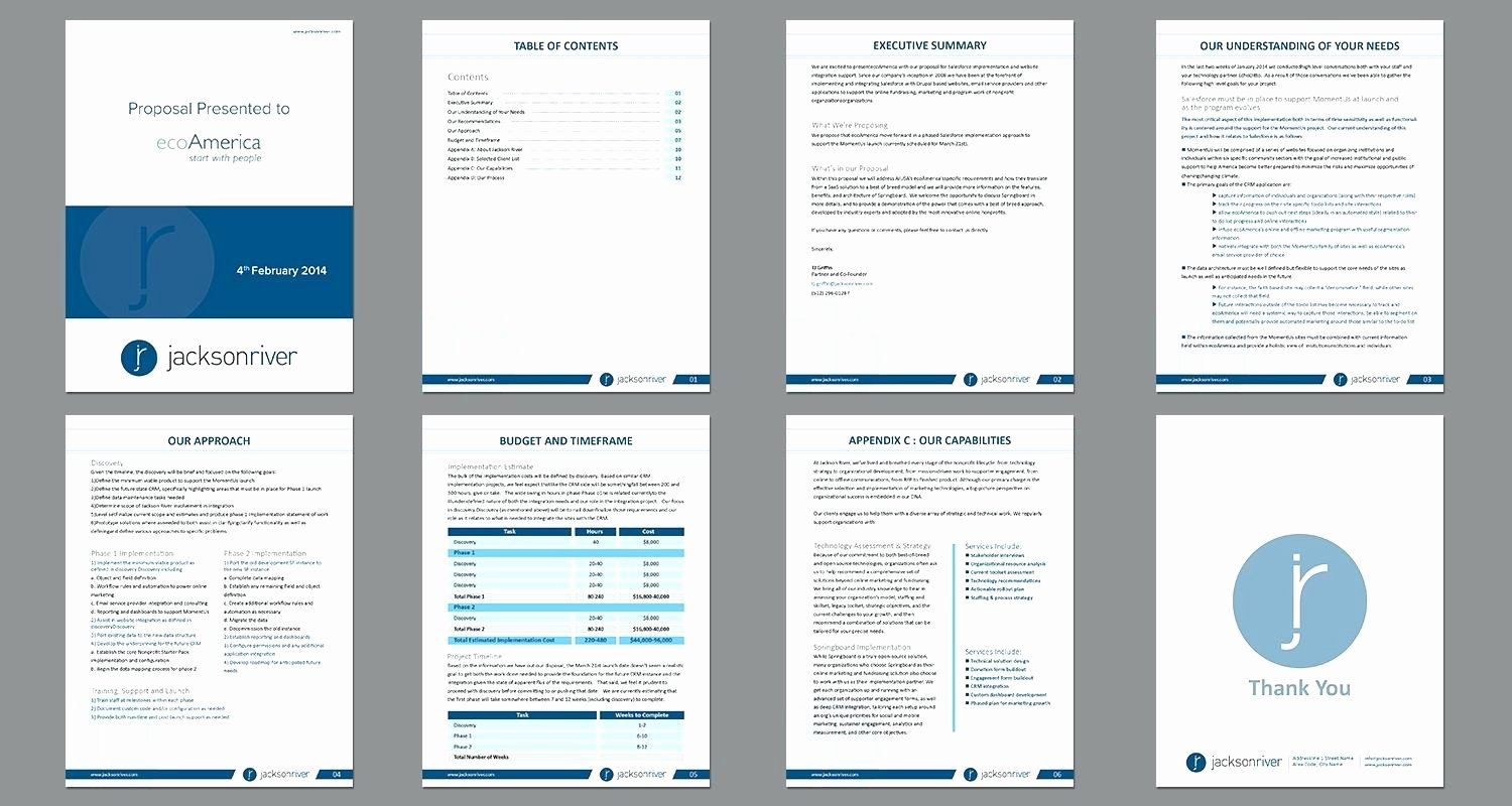 Sales Proposal Template Word Lovely Template Sales Proposal Template Word