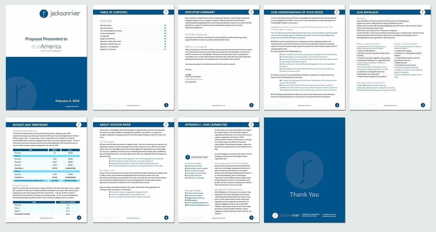 Sales Proposal Template Word Luxury Template Web Design Proposal Template Word