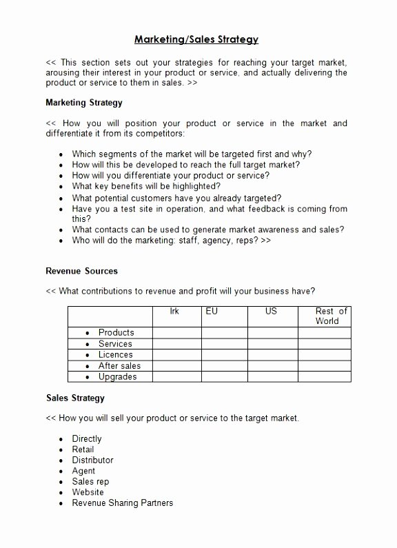 Sales Strategic Plan Template Beautiful 6 Sales Prospecting Plan Template Uiary