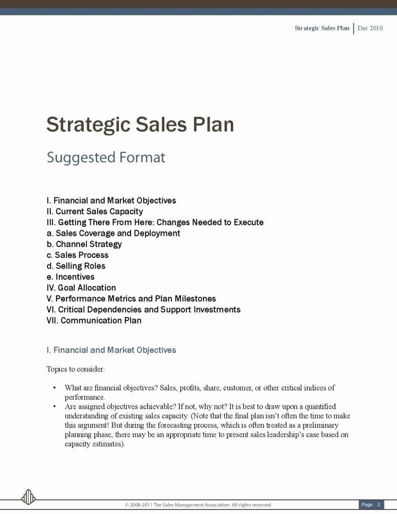 Sales Strategic Plan Template Elegant 5 Sales Strategic Plans
