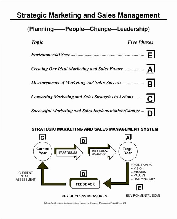 Sales Strategic Plan Template Fresh 27 Sales Action Plan Templates Doc Pdf Ppt
