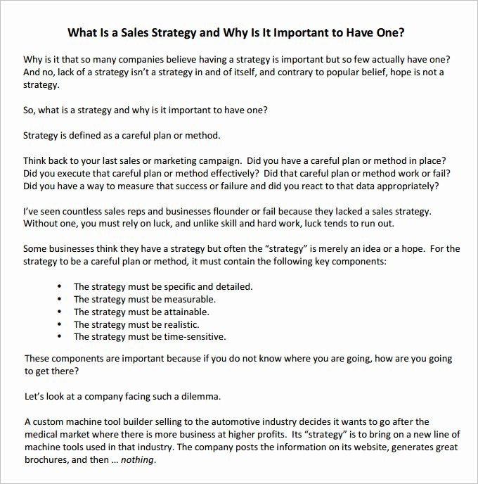 Sales Strategic Plan Template Unique 12 Sales Strategy Templates Doc Pdf