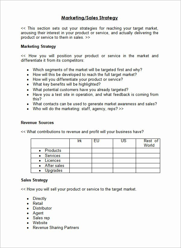 Sales Strategy Plan Template Best Of 24 Sales Plan Templates – Pdf Rtf Ppt Word Excel