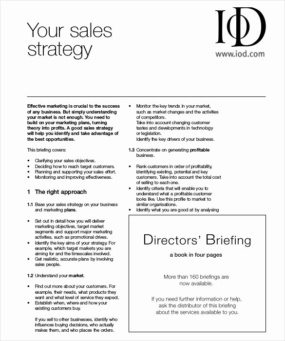 Sales Strategy Plan Template Elegant 12 Sales Strategy Templates Doc Pdf