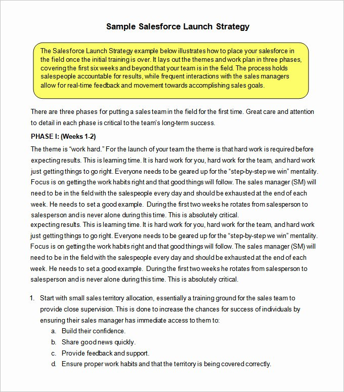Sales Strategy Plan Template Inspirational 12 Sales Strategy Templates Doc Pdf