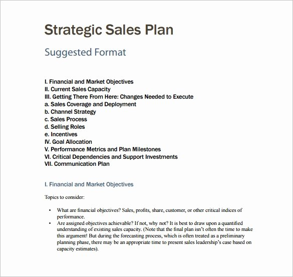 Sales Strategy Plan Template Inspirational Sales Plan Template 23 Free Sample Example format