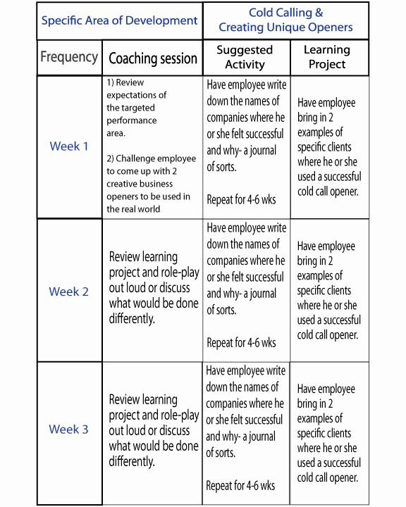 Sales Training Program Template Best Of Coaching Plan Examples