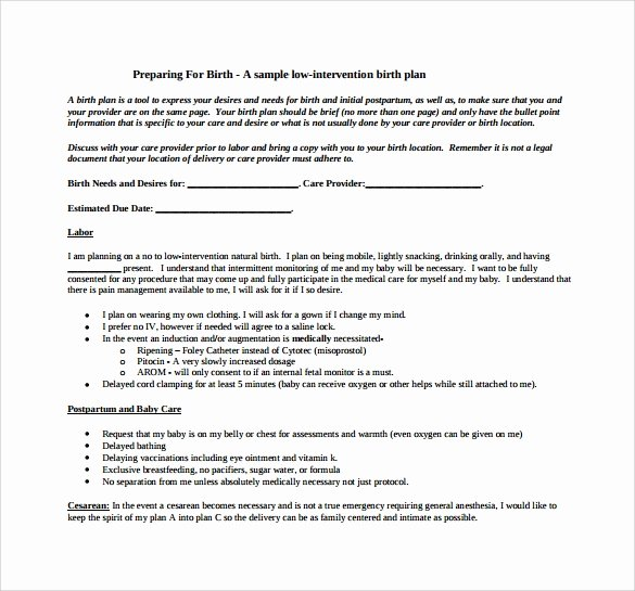 Sample Birthing Plan Template Awesome 22 Sample Birth Plan Templates – Pdf Word Apple Pages