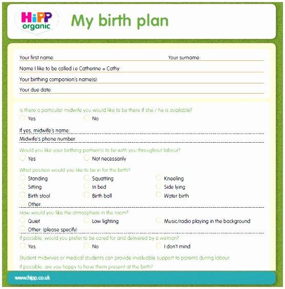 Sample Birthing Plan Template Beautiful 5 Birthing Plans Template Uutpy