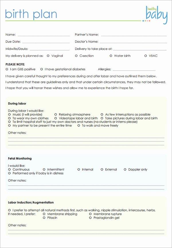 Sample Birthing Plan Template Elegant 22 Sample Birth Plan Templates – Pdf Word Apple Pages