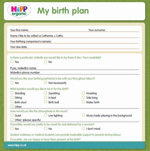 Sample Birthing Plan Template Elegant 9 Birth Plan Templates – Free Samples Examples & format