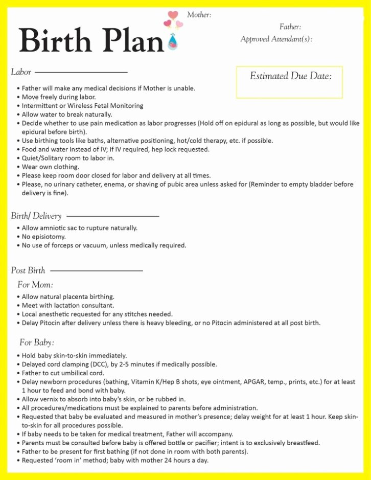Sample Birthing Plan Template Fresh Sample Birth Plan form Template Worksheet