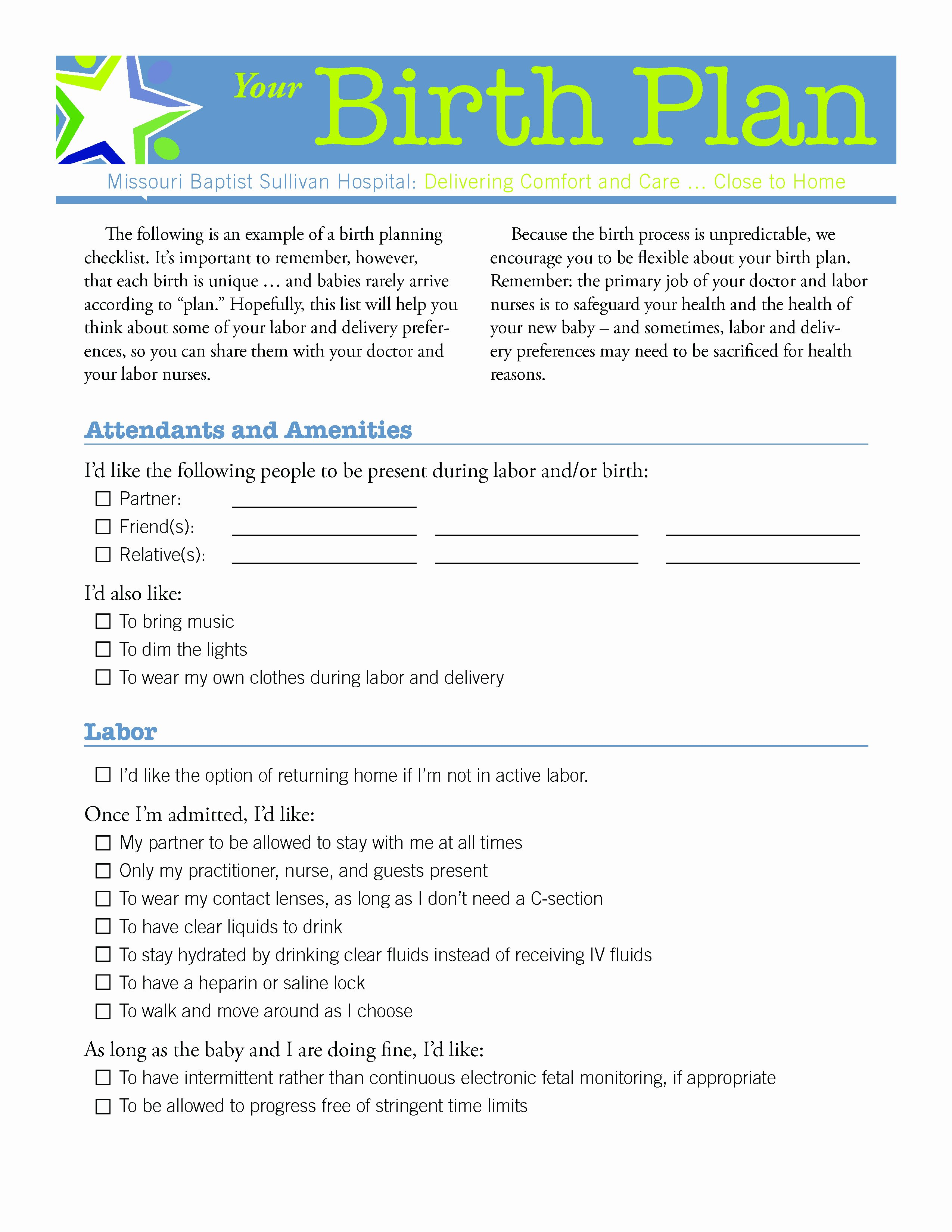 Sample Birthing Plan Template Unique Plan Birth Plan Template