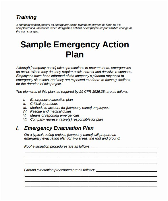 Sample Emergency Evacuation Plan Template Awesome 11 Sample Emergency Action Plan Templates