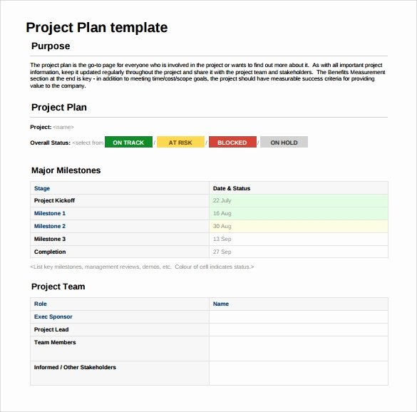Sample Project Plan Template Awesome 15 Sample Project Plans