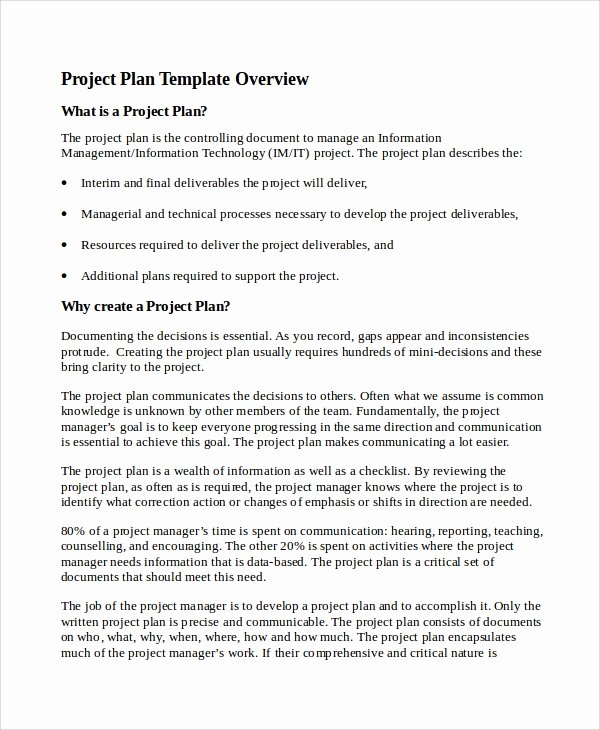 Sample Project Plan Template Best Of 7 It Project Plan Templates
