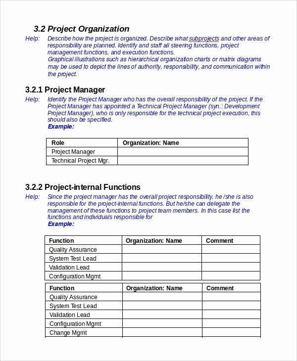 Sample Project Plan Template Lovely 7 It Project Plan Templates