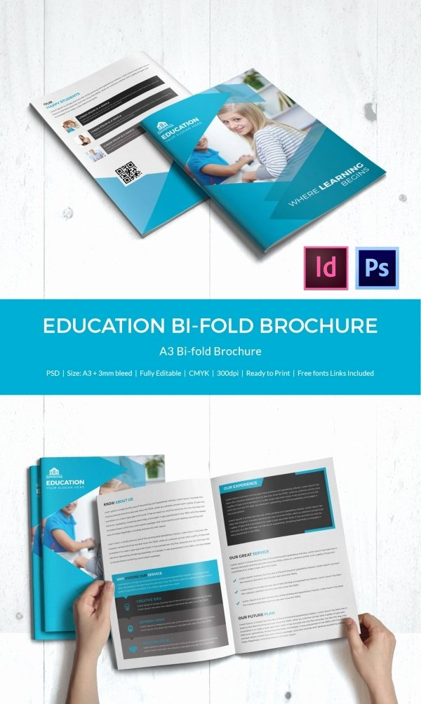 School Brochure Template Free Unique Education Brochure Template 43 Free Psd Eps Indesign