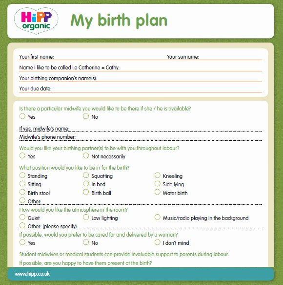 Simple Birth Plan Template Luxury 9 Birth Plan Templates – Free Samples Examples & format