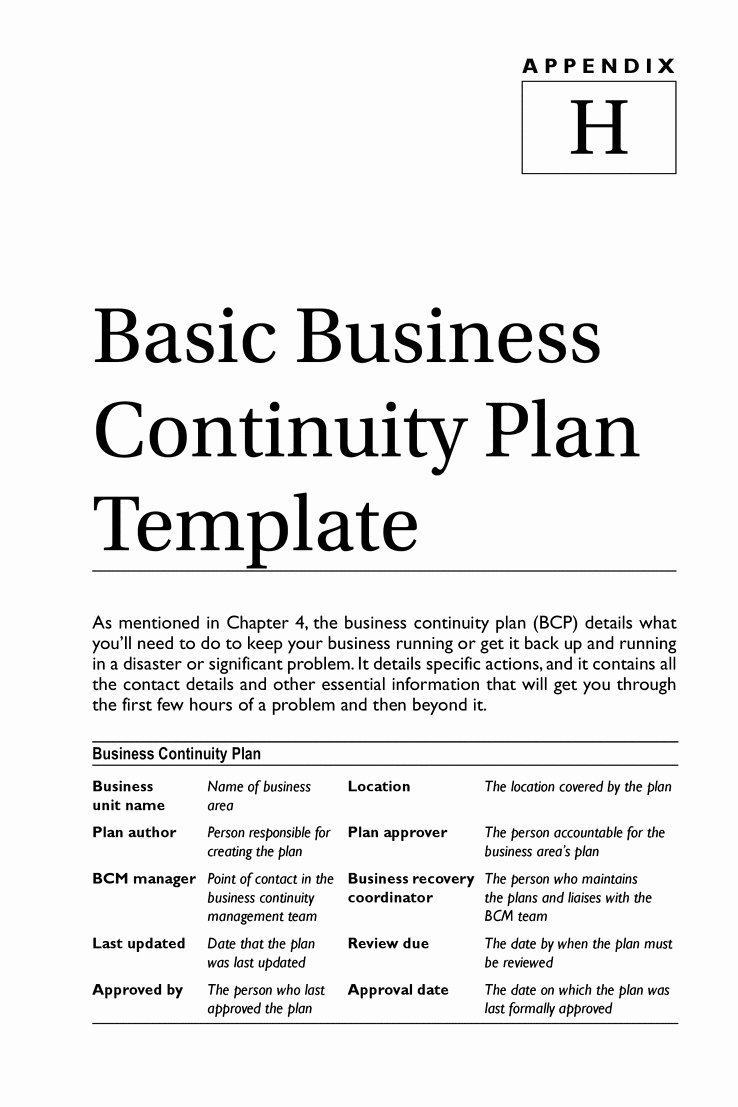 Simple Business Continuity Plan Template Luxury Business Continuity Plan Templ Ideasplataforma
