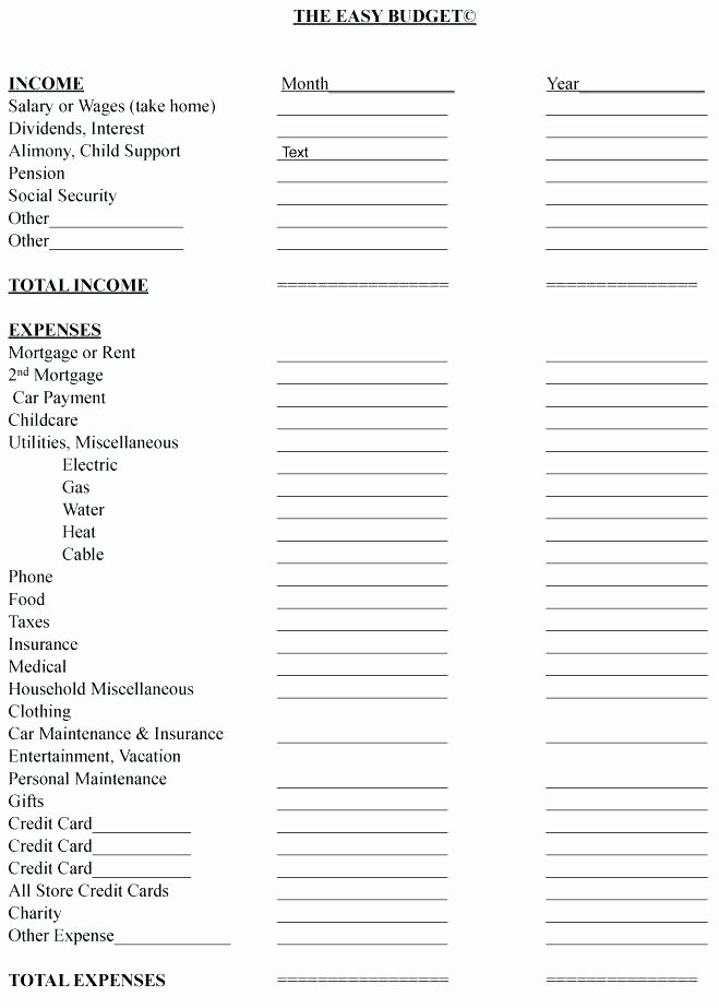 Simple Financial Plan Template Beautiful Simple Bud Worksheet Awesome Best S Easy Monthly Bud
