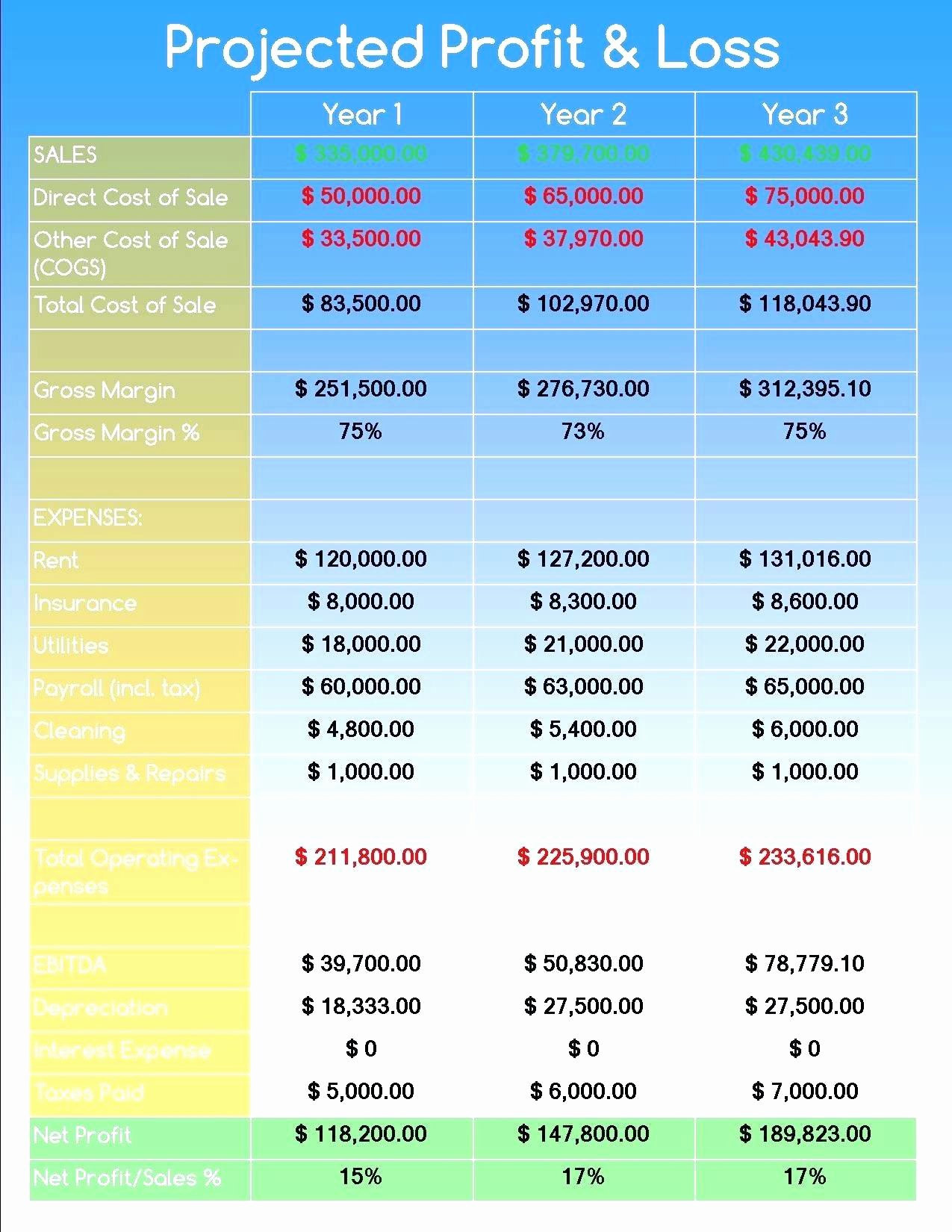 Simple Financial Plan Template New Template Simple Financial forecast Template