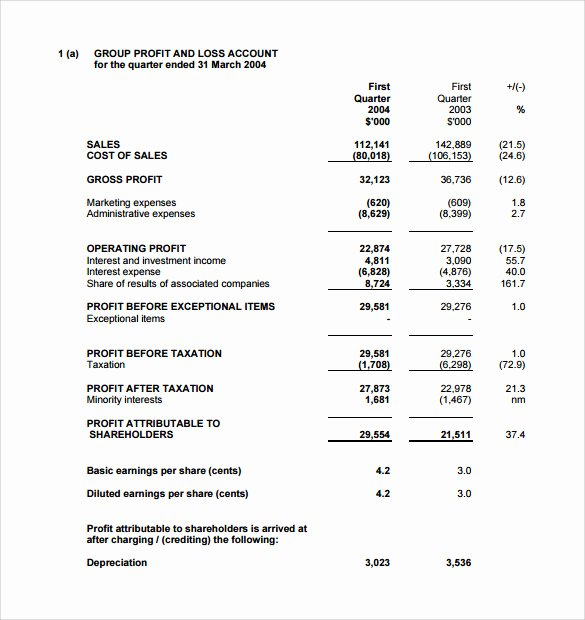 Simple Income Statement Template Elegant 12 Pro forma In E Statements – Samples Examples