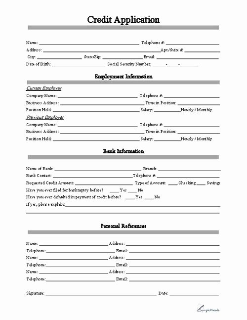Simple Loan Application form Template Elegant Credit Application form Business forms