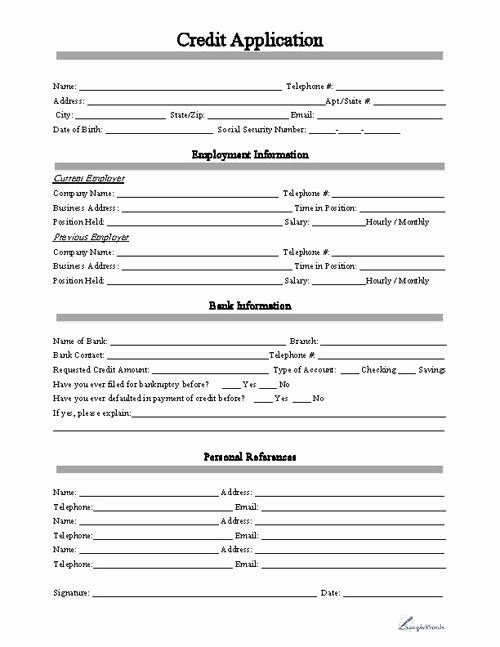 Simple Loan Application form Template Luxury Free Printable Credit Application form form Generic