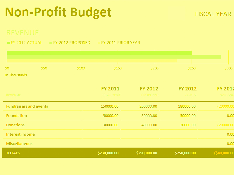 Simple Nonprofit Budget Template Lovely Non Profit Bud