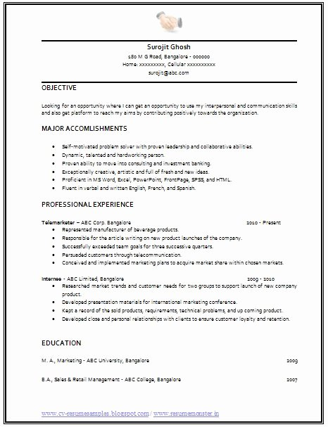 Simple Professional Resume Template Elegant Professional Curriculum Vitae Resume Template for All