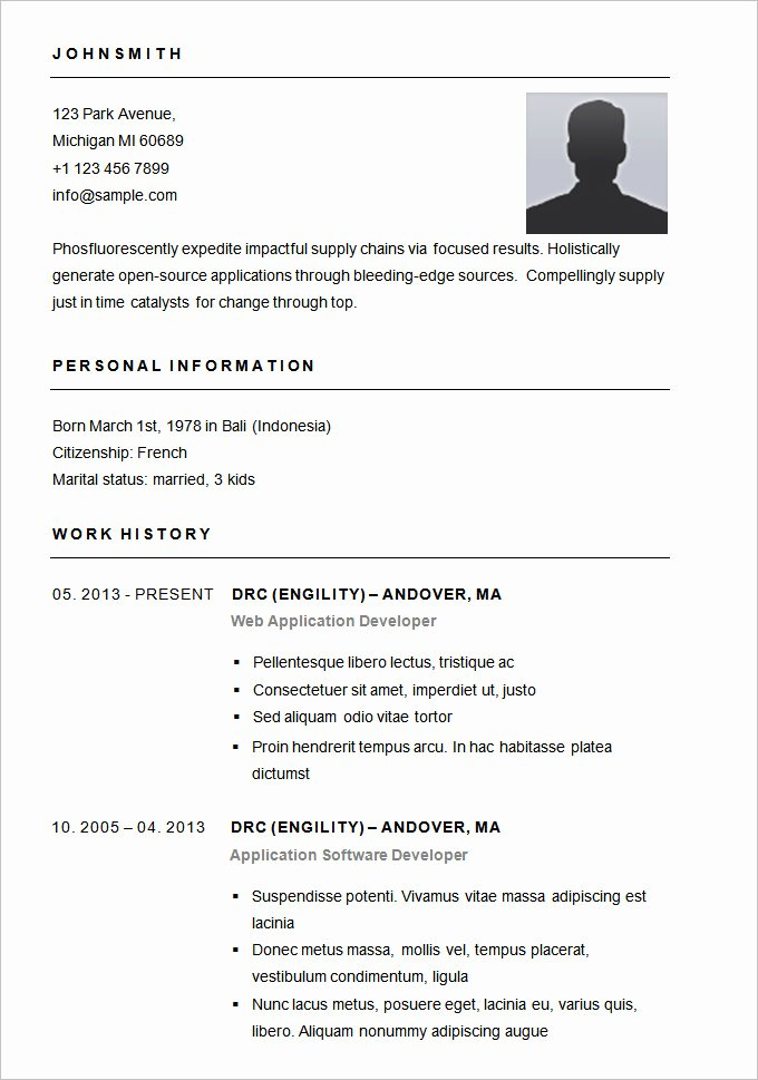 Simple Professional Resume Template Inspirational Resume Templates