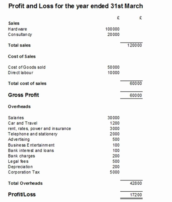 Simple Profit and Loss Template Awesome Simple P&l Statement – Fi Card Templates
