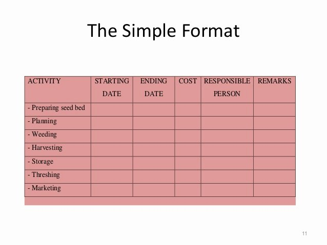 Simple Project Implementation Plan Template Luxury Project Implementation