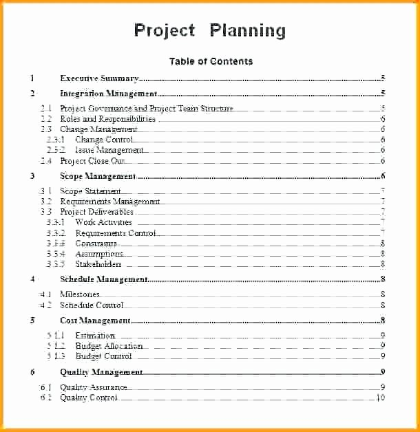Simple Project Plan Template Word Fresh Munication Plan Presentation Example Project Management