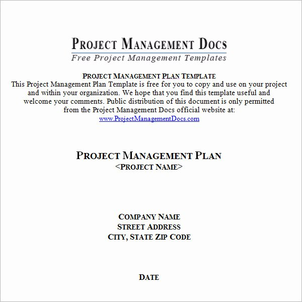 Simple Project Plan Template Word Lovely 19 Useful Sample Project Plan Templates to Downlaod