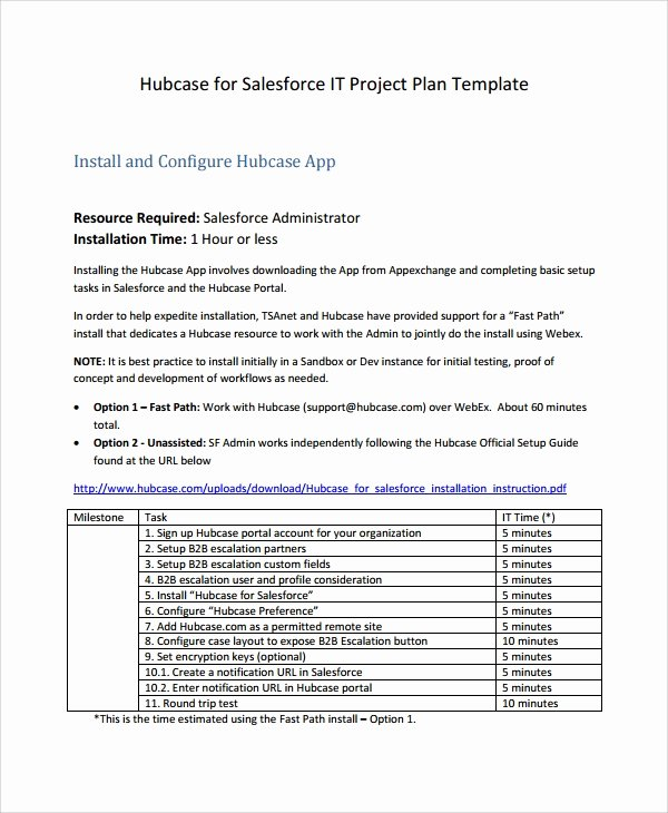 Simple Project Plan Template Word Lovely 7 It Project Plan Templates