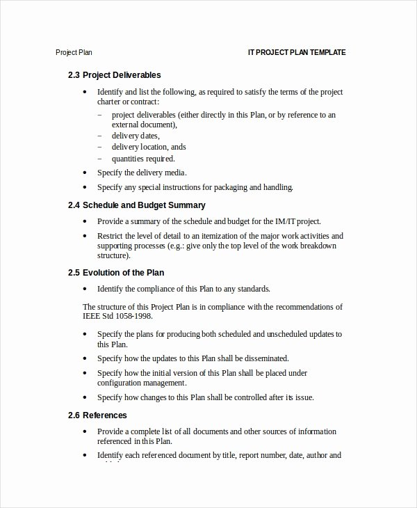 Simple Project Plan Template Word Lovely Project Plan Template 12 Free Word Psd Pdf Documents
