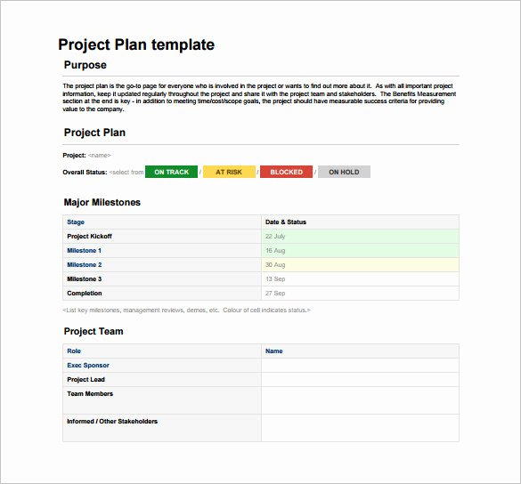 Simple Project Plan Template Word Luxury 23 Project Plan Template Doc Excel Pdf