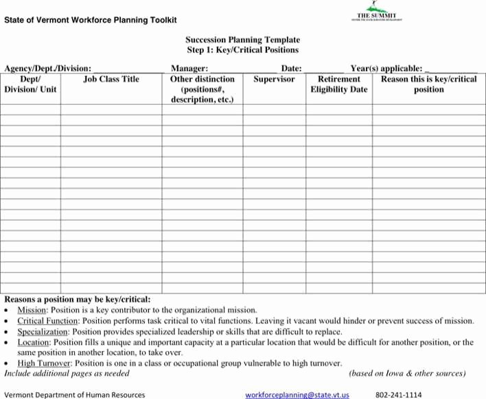 Simple Succession Plan Template Inspirational Download Succession Planning form for Free Tidytemplates