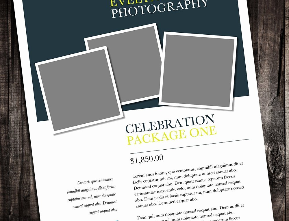 "Single Page Brochure Template Elegant Single Page Brochure Template – ""minter"""