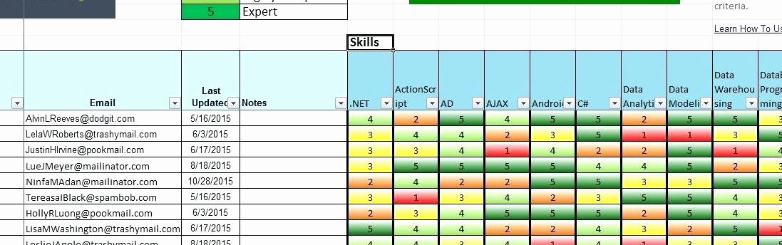 Skills Matrix Template Excel Elegant Skills Matrix Template Beautiful Template Design Ideas