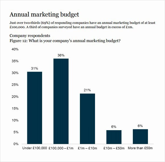 Small Business Budget Template Luxury 10 Marketing Bud Samples