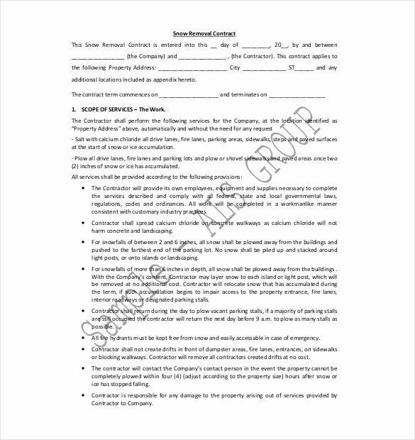 Snow Removal Contracts Template New 20 Snow Plowing Contract Templates Google Docs Pdf